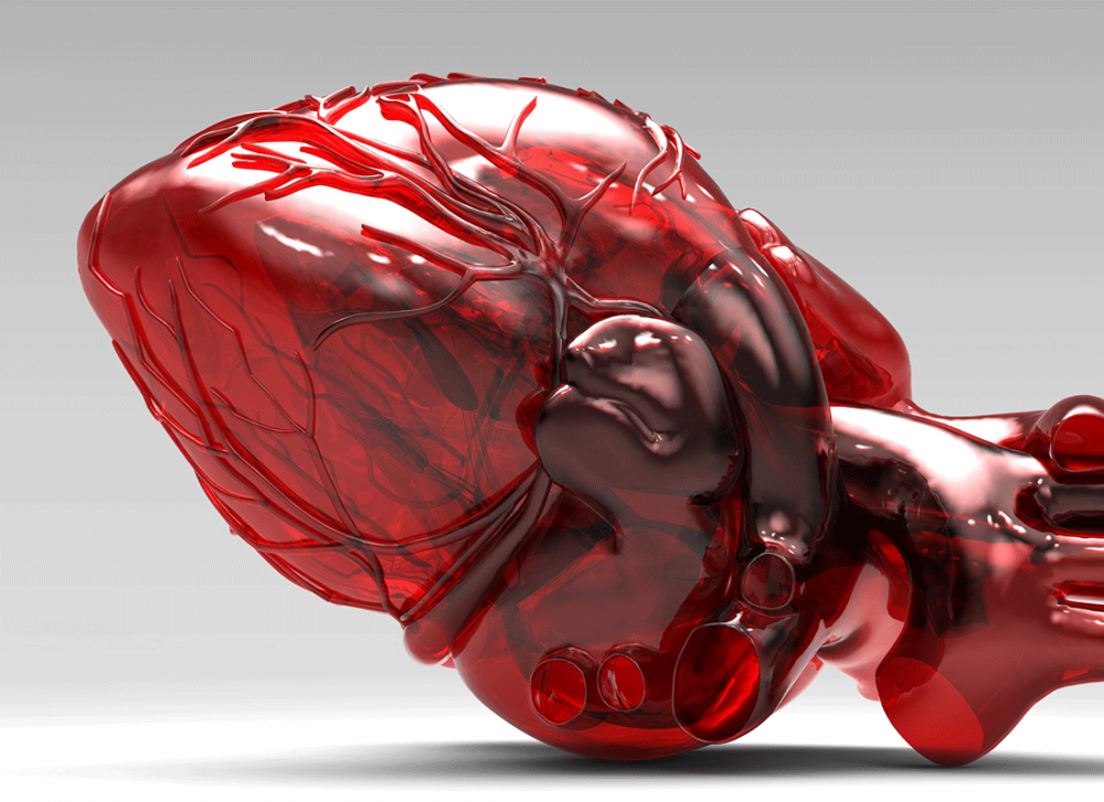 Izrael: Naukowcy z Tel Awiwu stworzyli pierwsze w historii wydrukowane, w pełni ukrwione serce.